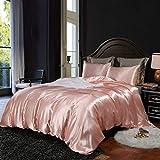 Lanqinglv Bettwäsche Set 135x200cm 2 Teilig Rosa Satin Seide Seidig Luxus Bettbezug mit Reißverschluss und Kissenbezug 80x80cm
