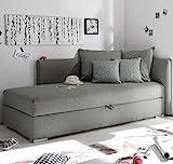 Froschkönig24 MIKA Polsterliege Polsterbett Schlafsofa Couch Sofa 208x84x100 cm Silber