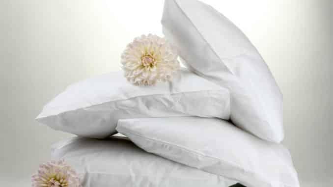 Frische saubere Kissen