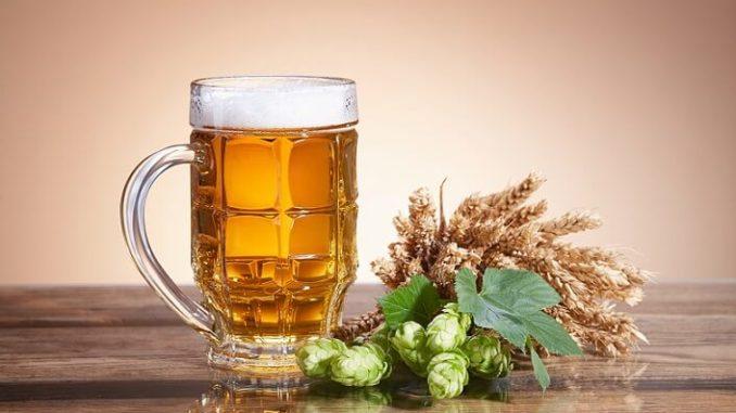 Was braucht man zum Bier brauen zu Hause