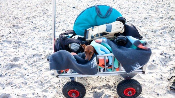 Faltbarer Bollerwagen für Hunde